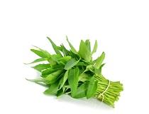 Water Spinach-কলমি শাক (1bundle-আঁটি)